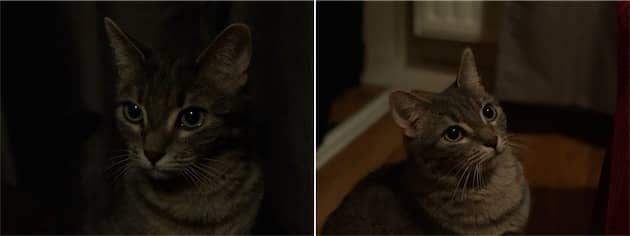 iPhone8Plus à droite, iPhoneX à gauche. Sur ce cas extrême, l'iPhone8Plus est à la limite de l'inexploitable (et non, ce n'est pas l'éclairage de portrait scène), alors que l'iPhone X est très sombre, mais elle peut encore servir. Cliquer pour agrandir