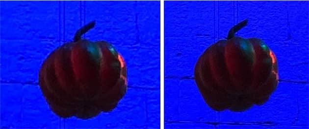 iPhone8Plus à gauche, iPhoneX à droite. C'est en zoomant au maximum que les différences commencent à être visibles. Ici, la citrouille prise avec l'iPhoneX, à droite donc, est plus nette que celle de l'iPhone8 Plus. Cliquer pour agrandir