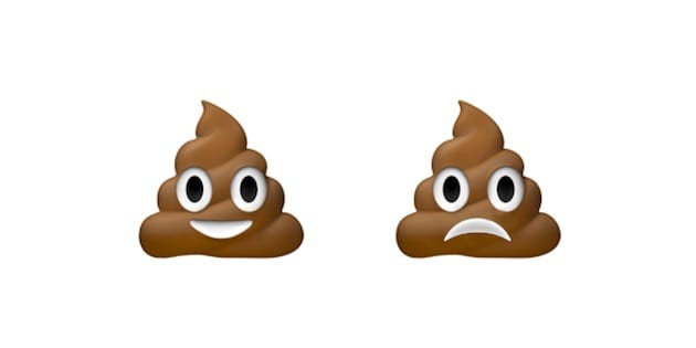 emoticone crotte