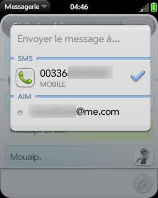 On peut passer rapidement des SMS à l'IM. En 3G ou en Wi-Fi, nous n'avons pas constaté de latence avec AIM/iChat, gTalk ou MSN.