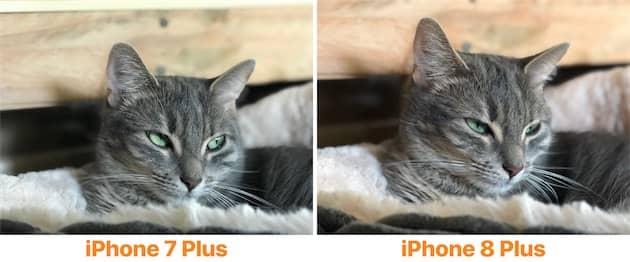 Ces deux photos sont un bon exemple de la nouvelle colorimétrie utilisée par Apple. Sur le nouvel iPhone (droite), les couleurs sont nettement plus chaudes, c'est particulièrement sensible sur le bois à l'arrière-plan. Cliquer pour agrandir