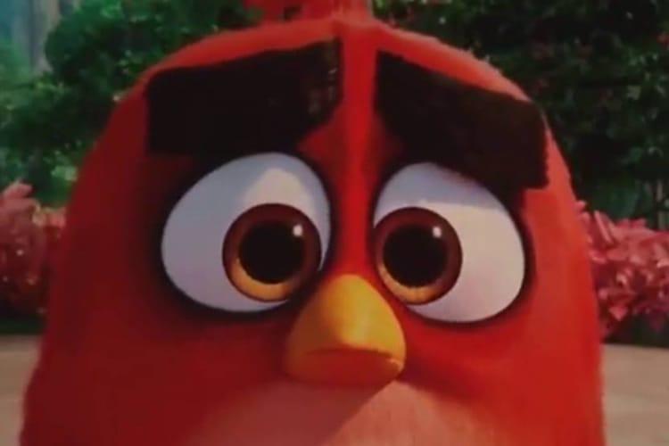 Rovio : les ailes coupées de l'éditeur d'Angry Birds