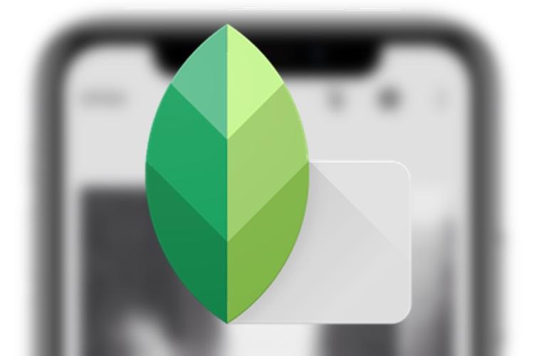 Snapseed modifie les photos sur tout l'écran de l'iPhoneX